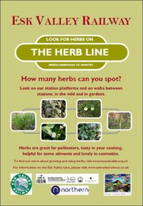 Herb Line poster image