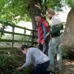 Planting wild strawberries Image: Hambleton DC