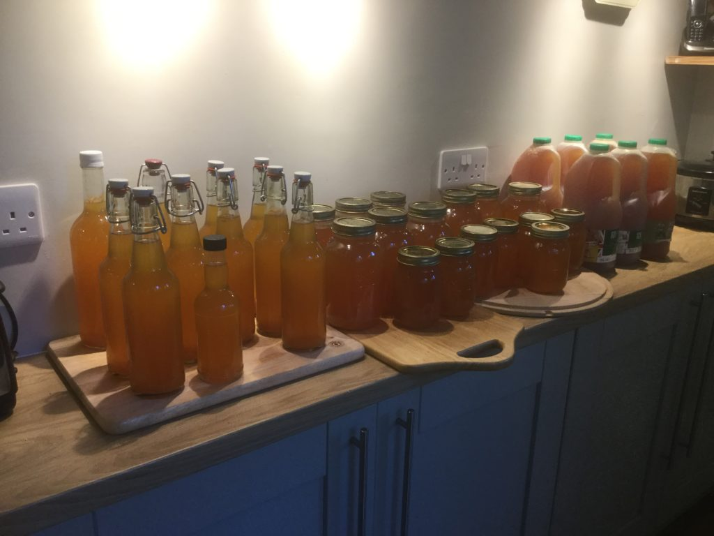 33 litres of pressed juice